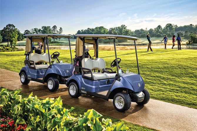 Winterize your Electric Yamaha Golf Car