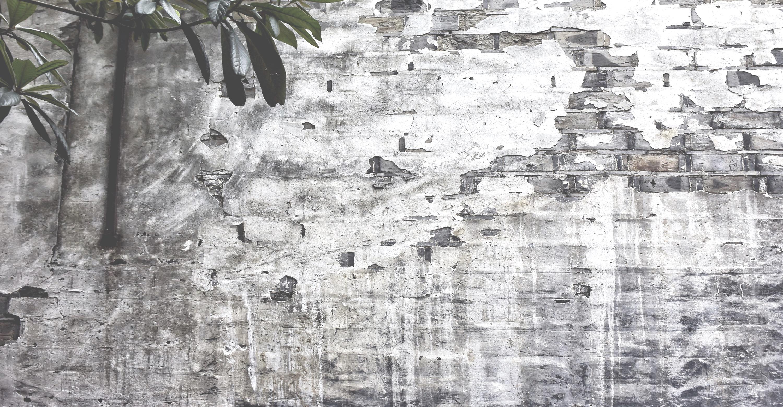 Wall Wuzhen GALiRo