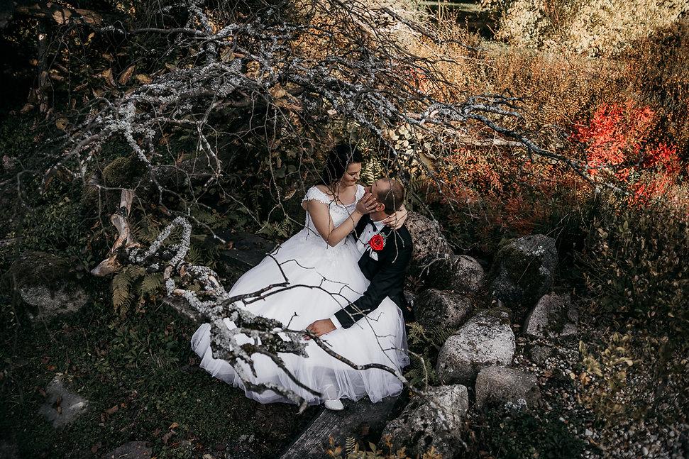 Sesja ślubna Arboretum SGGW w Rogowie