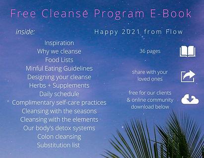 flyer for cleanse program e-book.jpg