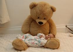 Teddy cuddles
