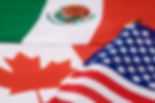 Customs Free Trade Agreements, NAFTA, FTA, duty drawback, Customs Attorney, Customs Seizure, Customs Broker, Classification, Customs Penalties, Customs Liquidated Damages, FDA Seizures, FDA Detentions, FDA Import Alerts, CBP Rulings, CBP Money Seizures