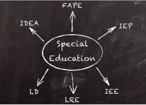 EDUCATION FOR STUDENTS WITH DISABILITIES AT RISK