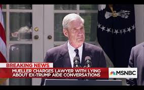 LAWYER INDICTED FOR LYING IN RUSSIA INVESTIGATION