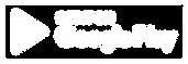 google-play-logo-white.png
