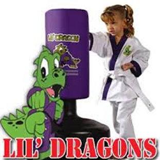 Little Dragons Grading W.B. 7th June 2021