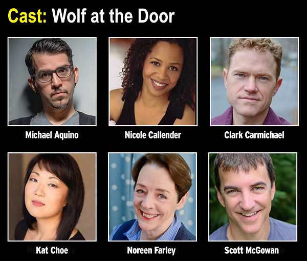 Cast of Wolf at the Door
