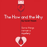 The How and the Why by Sarah Treem