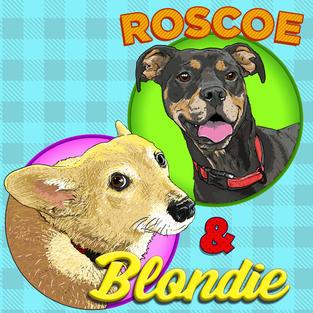 roscoe blondie square.jpg