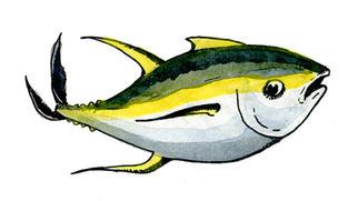 blue fin tuna.jpg