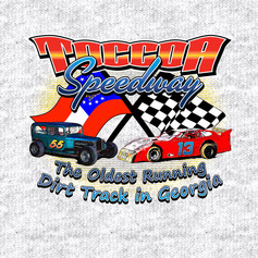 Toccoa Motor Speedway-New old cars-Desig