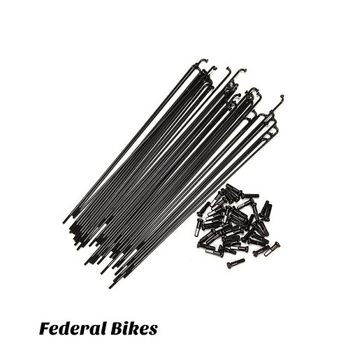 Federal Spokes