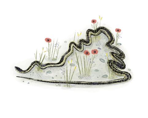 Victoria-Borges-art-illustration-snake-garter snake-virginia