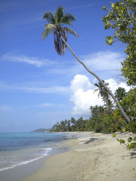 Coco Beach Vieques PR