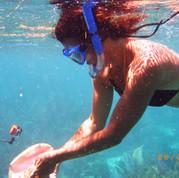 Off Shore Snorkeling