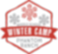 MS winter camp logo.png