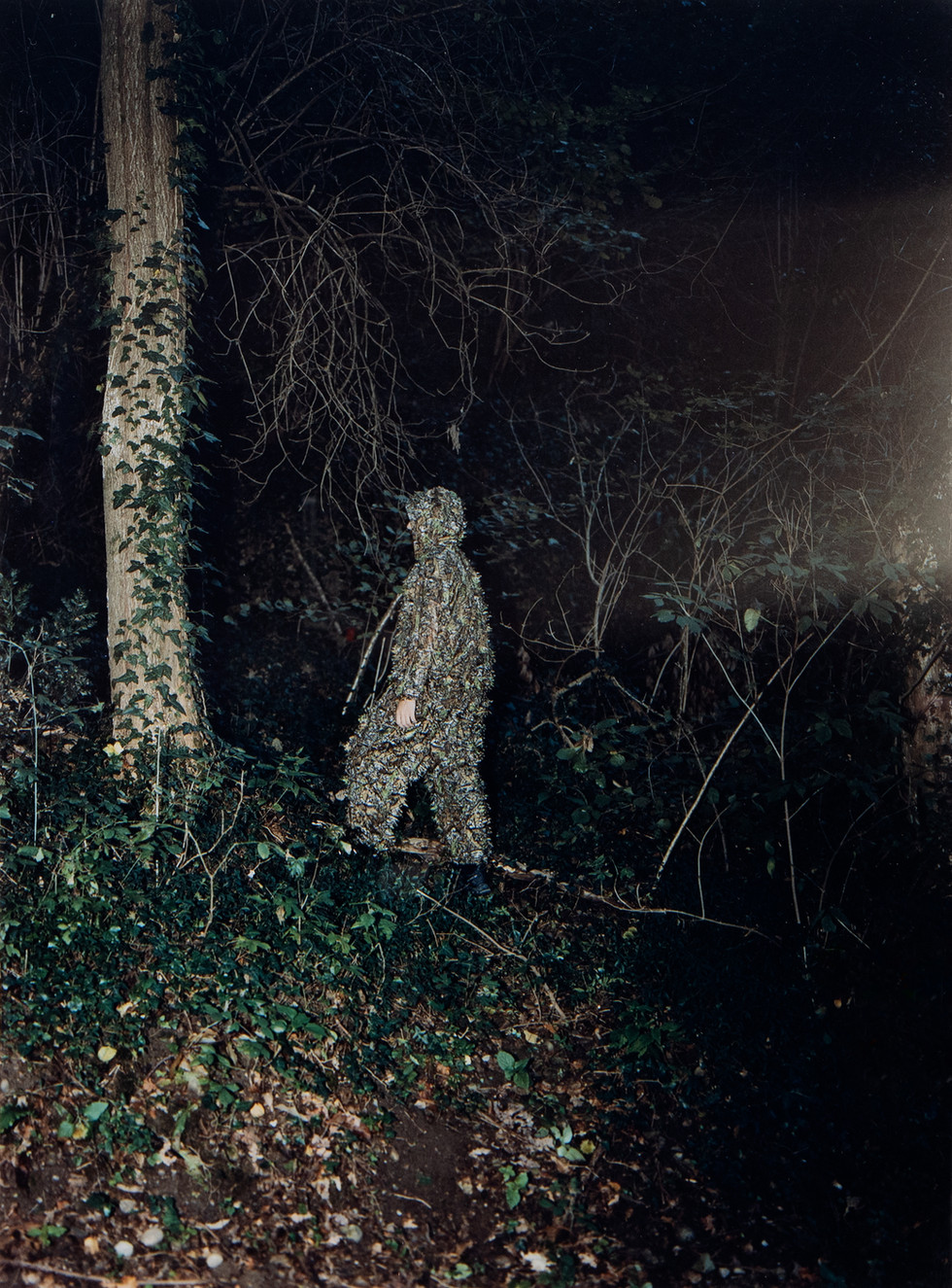 camouflage_LS_01.jpg