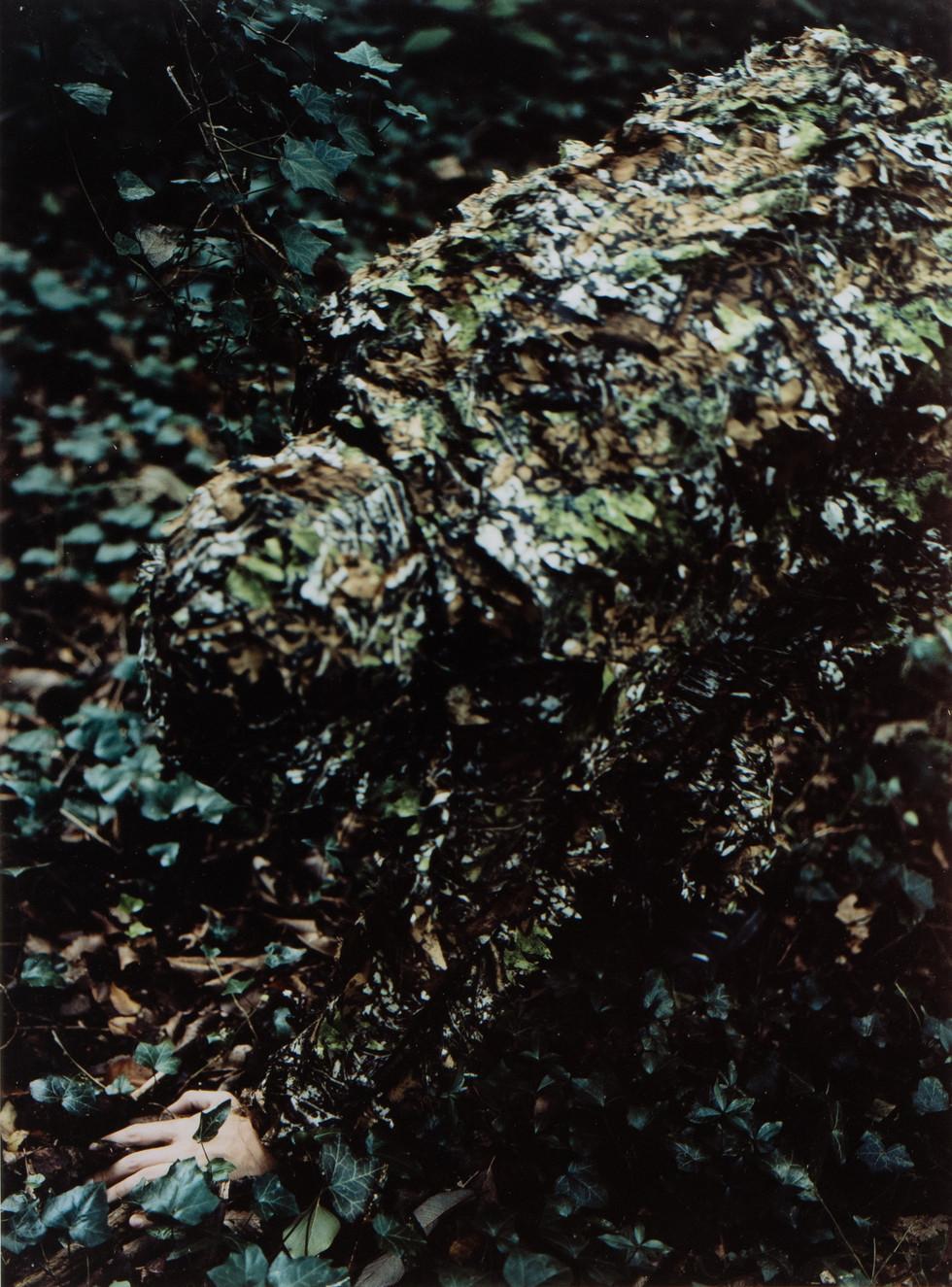 camouflage_LS_02.jpg