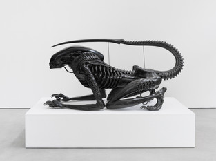 Spazio Maiocchi | Sterling Ruby and  H.R. Giger
