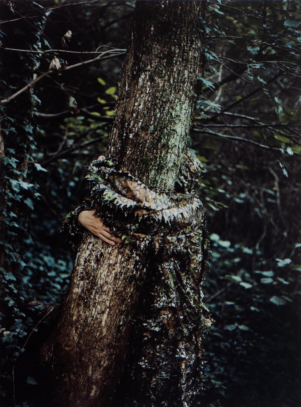 camouflage_LS_03.jpg