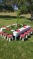 Children party hire Geelong & Melbourne