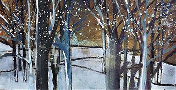 Winter wonder II.JPG