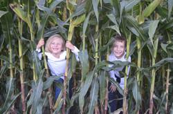 Coppess Family Farms