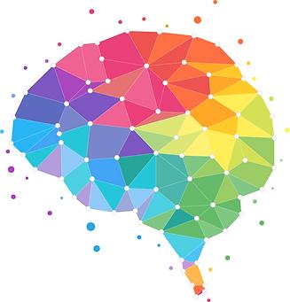 brain-4389724_1280.png