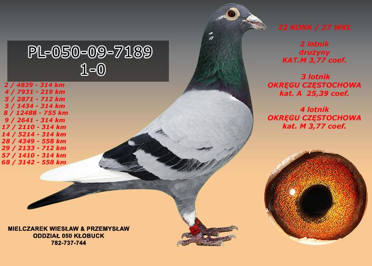 PL-050-09-7189