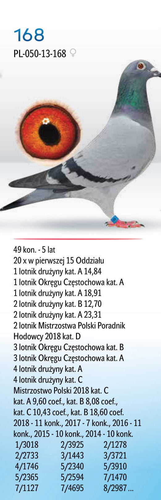 portfo6