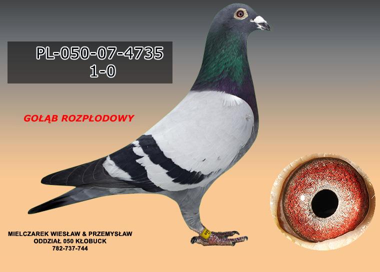 PL-050-07-4735