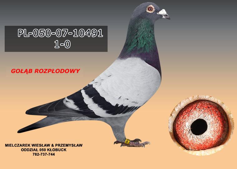 PL-050-07-10491