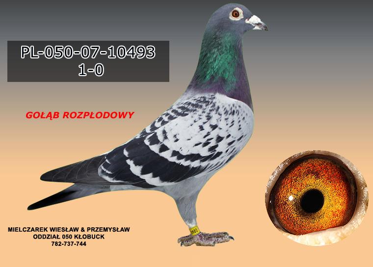PL-050-07-10493