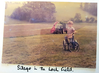 Silage in the Loch field