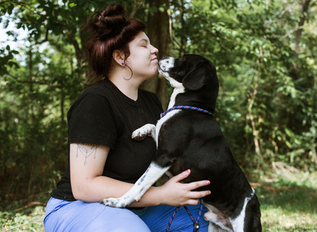 Choosing the Right Rescue Dog