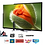 Thumbnail: Téléviseur  Smart TV LED Full HD-127 cm