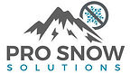 Pro Snow Solutions Logo S