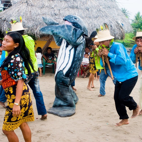 Festival de tortuga marina en Armila San Blas, Panamá.