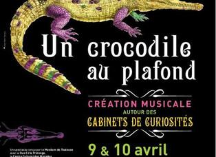 Un crocodile au plafond-Création musicale autour des cabinets de curiosités