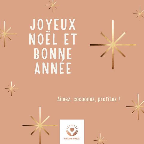 joyeux noël et bonne année instagram.png