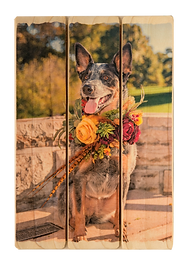 3 panel phlatt, pet on wood, wedding photo on wood, picture pallet, dog on wood