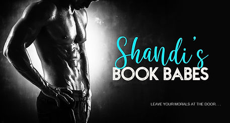 Shandi's reader group teaser