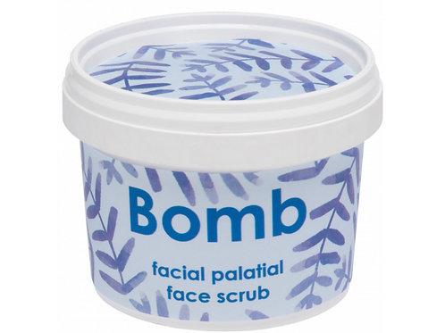 Facial Palatial Face Scrub