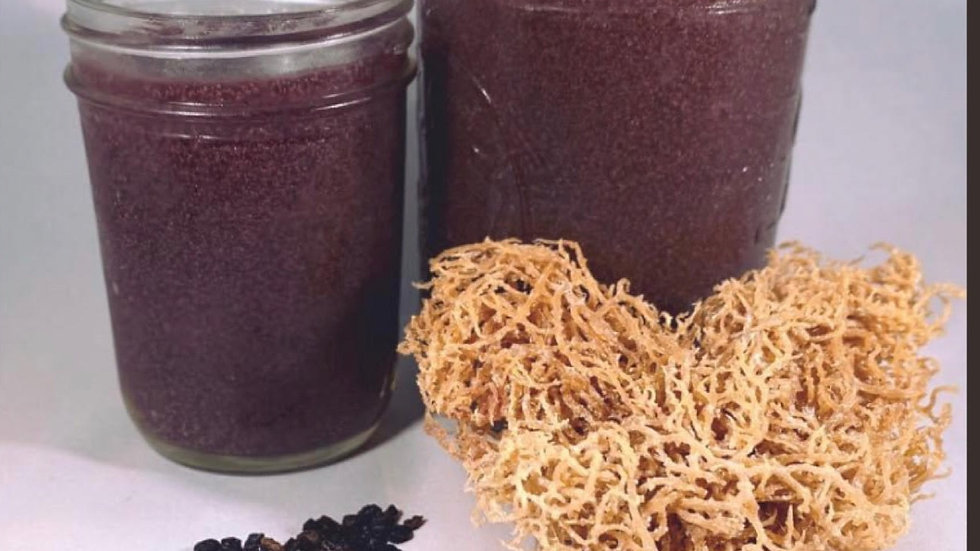 Elderberry Ginger Sea moss