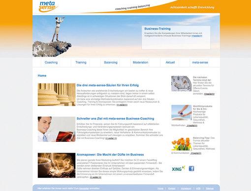 metasense Webpage.jpg