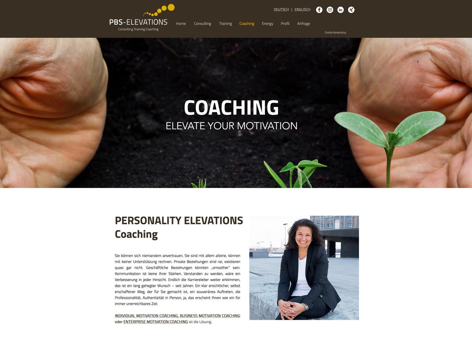 Webpage pbs2.png