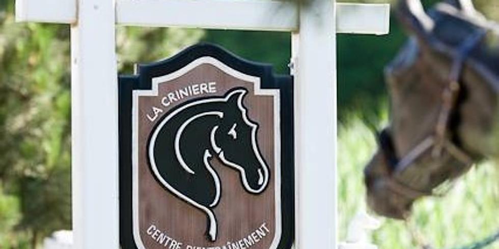 ANNULÉ − La crinière de Napierville − ANNULÉ