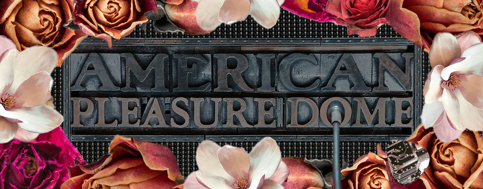 American Pleasure Dome Banner Speaker Gr