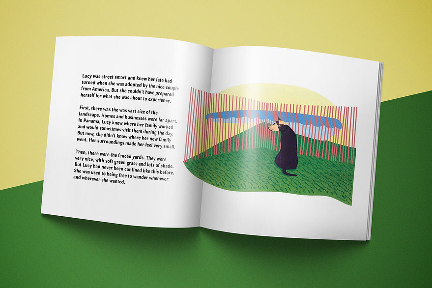 This is Lucy immigration children's book