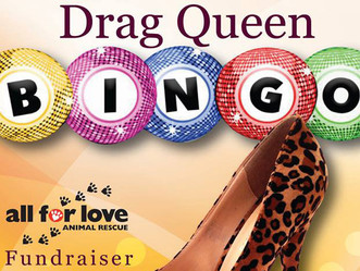Drag Queen Bingo Fundraiser